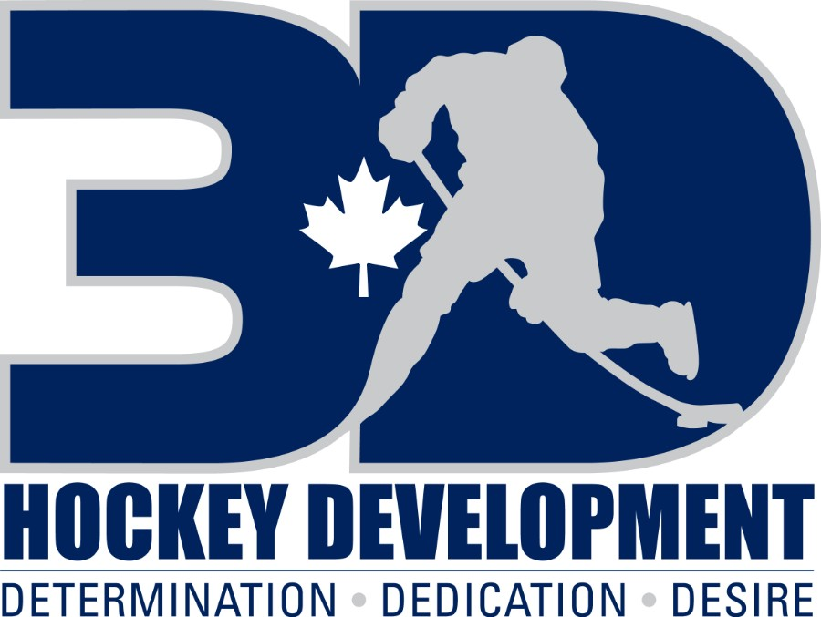 3D Hockey Development
